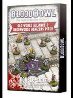 Old World Alliance & Underworld Denizens Pitch and Dugout Set