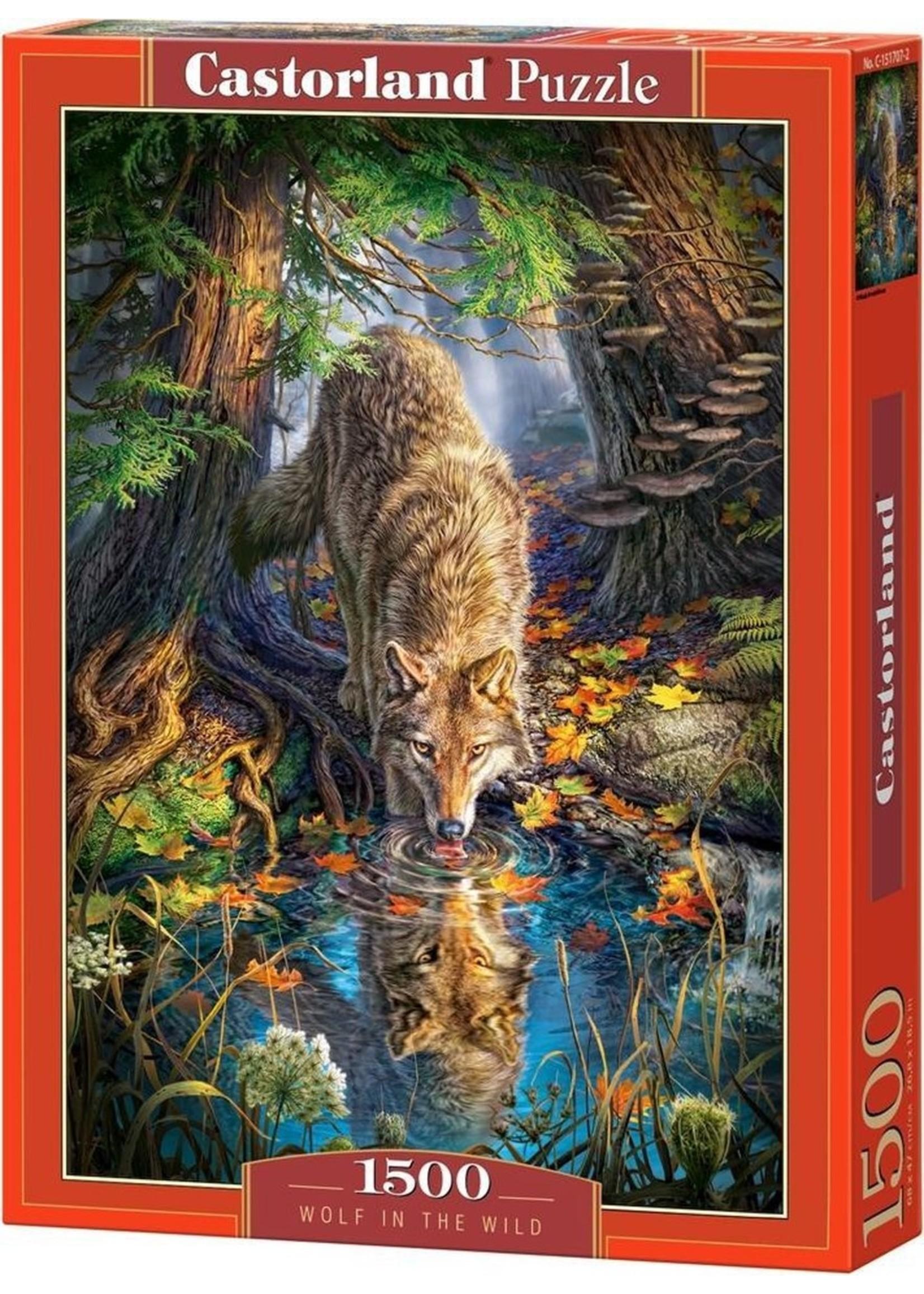 Castorland Wolf In The Wild - 1500 Stukjes