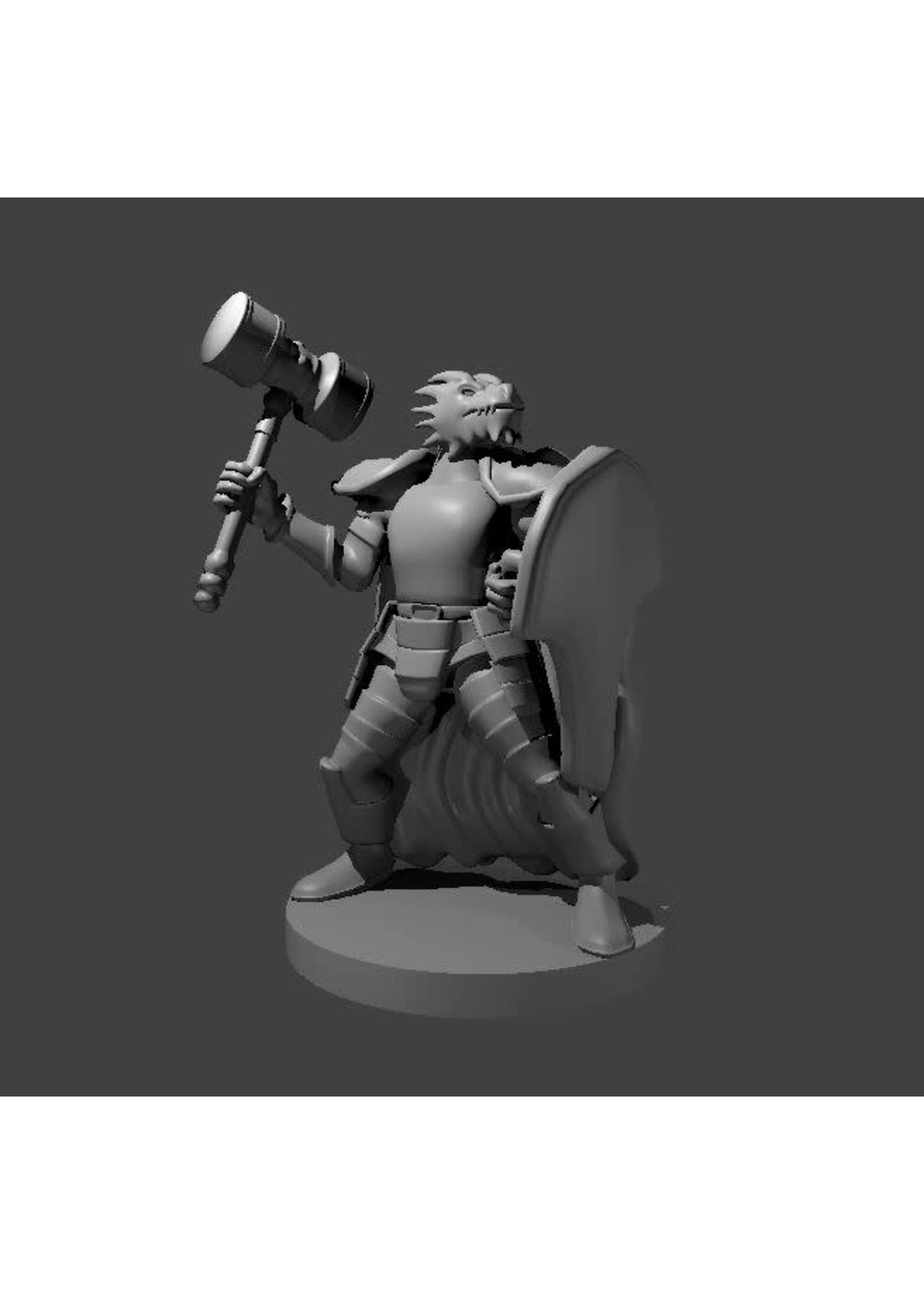 Dragonborn Fighter With Hammer And Shield (Patreon Mz4250)