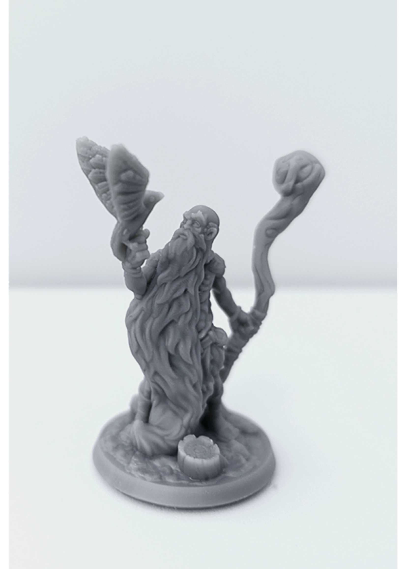 3D Printed Miniature - Druid Male01 - Dungeons & Dragons - Hero of the Realm KS
