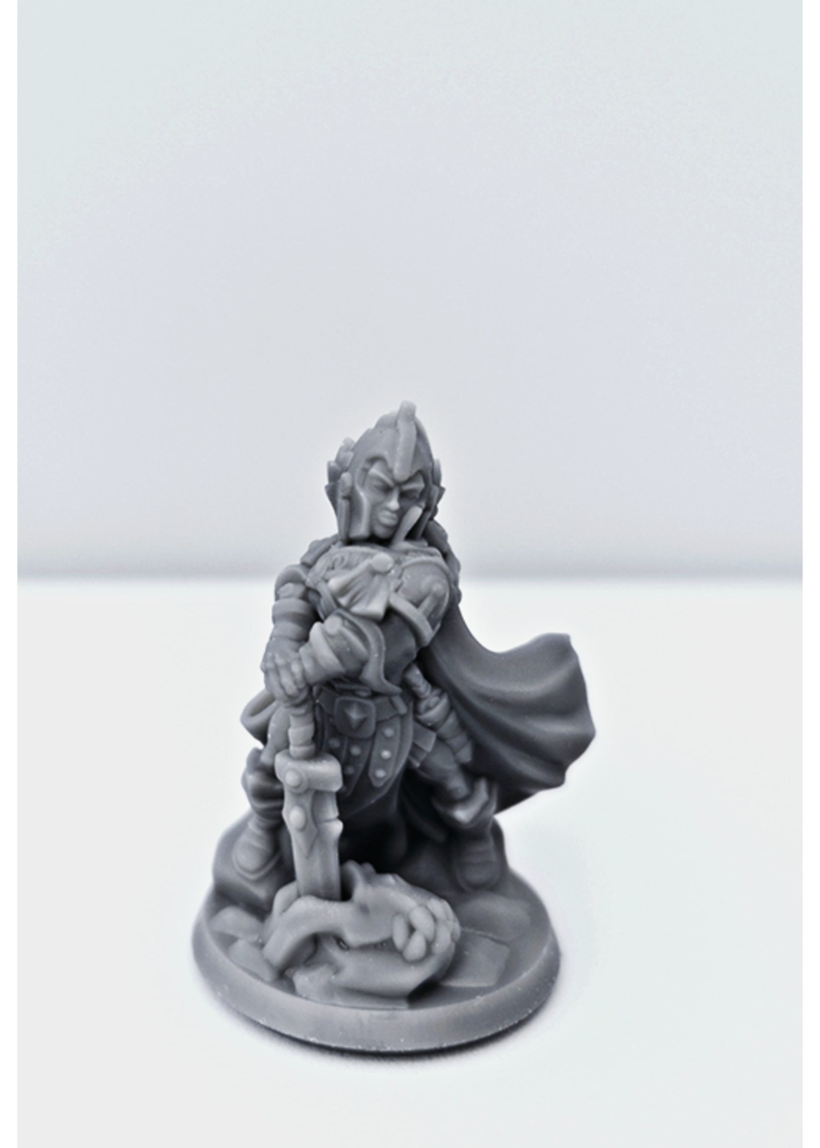 3D Printed Miniature - Paladin Female 02 - Dungeons & Dragons - Hero of the Realm KS