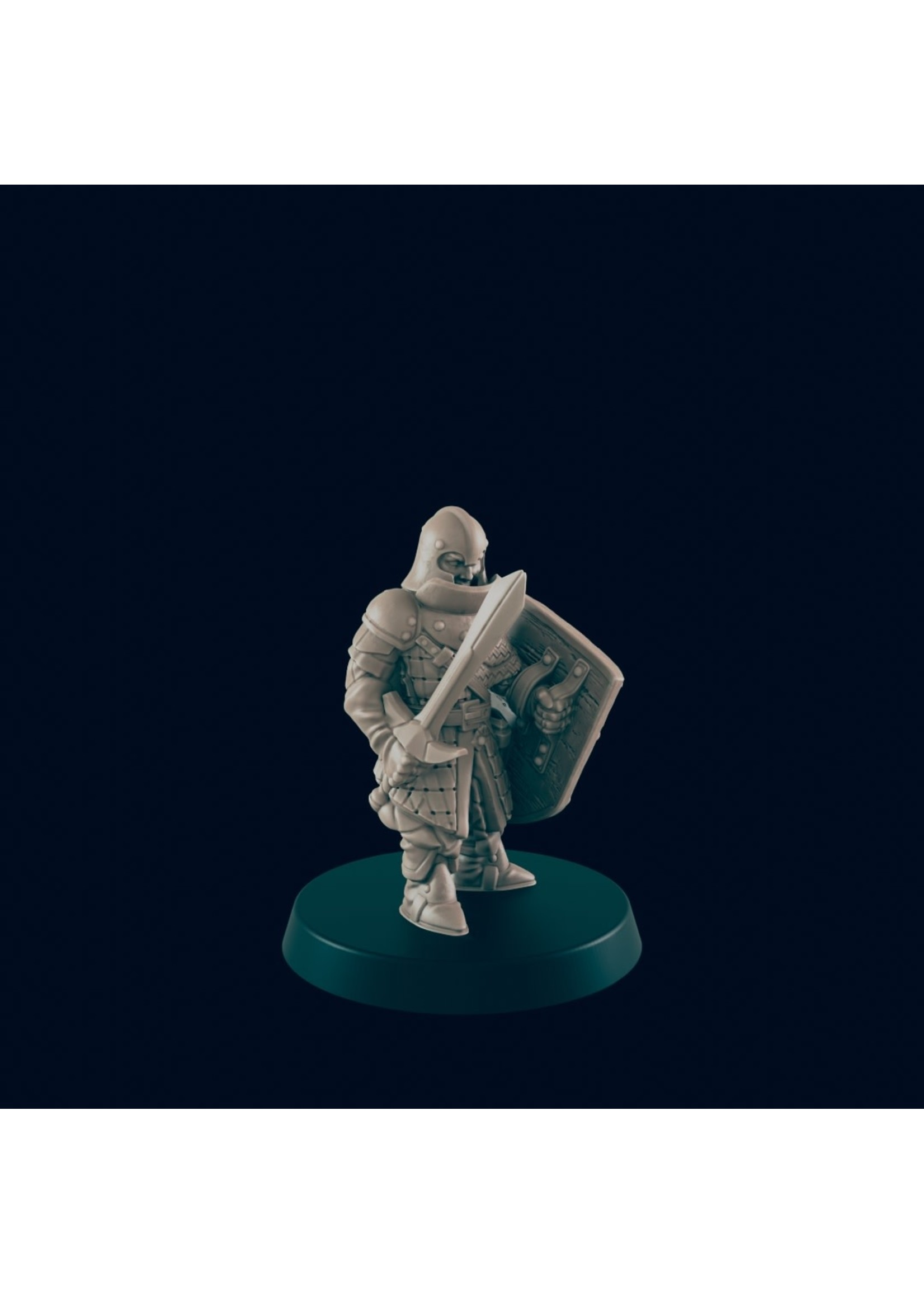 3D Printed Miniature - Guard Infantry - Dungeons & Dragons - Beasts and Baddies KS