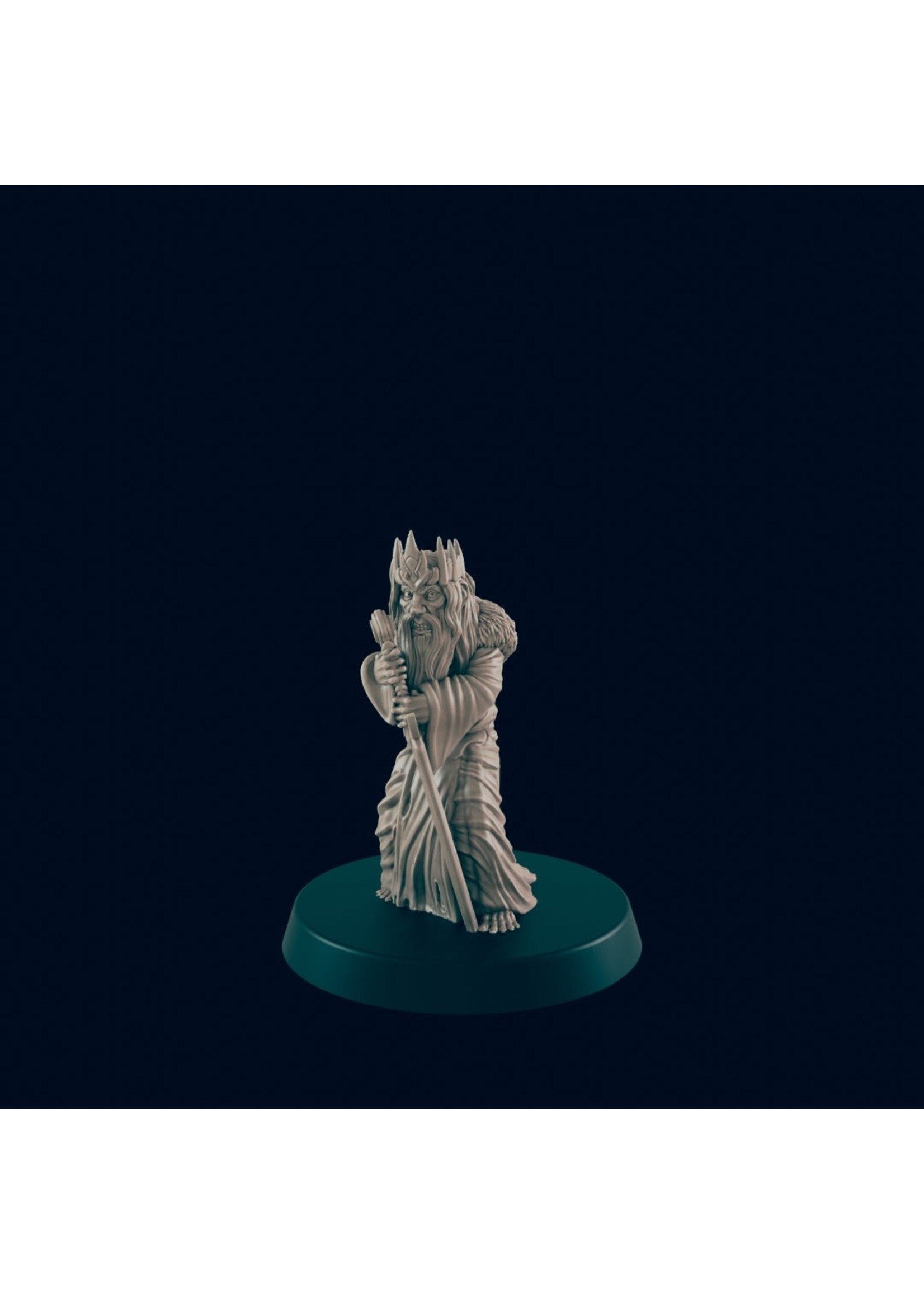3D Printed Miniature - Mad King  - Dungeons & Dragons - Beasts and Baddies
