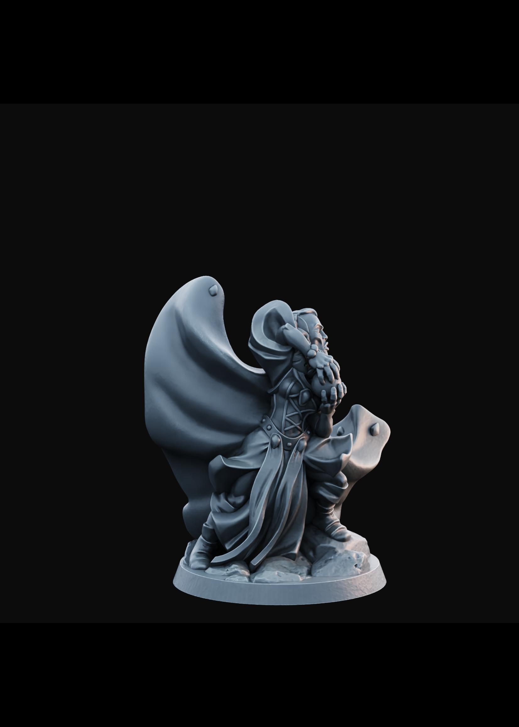 Elven Female 01 - Hero of the Realm KS