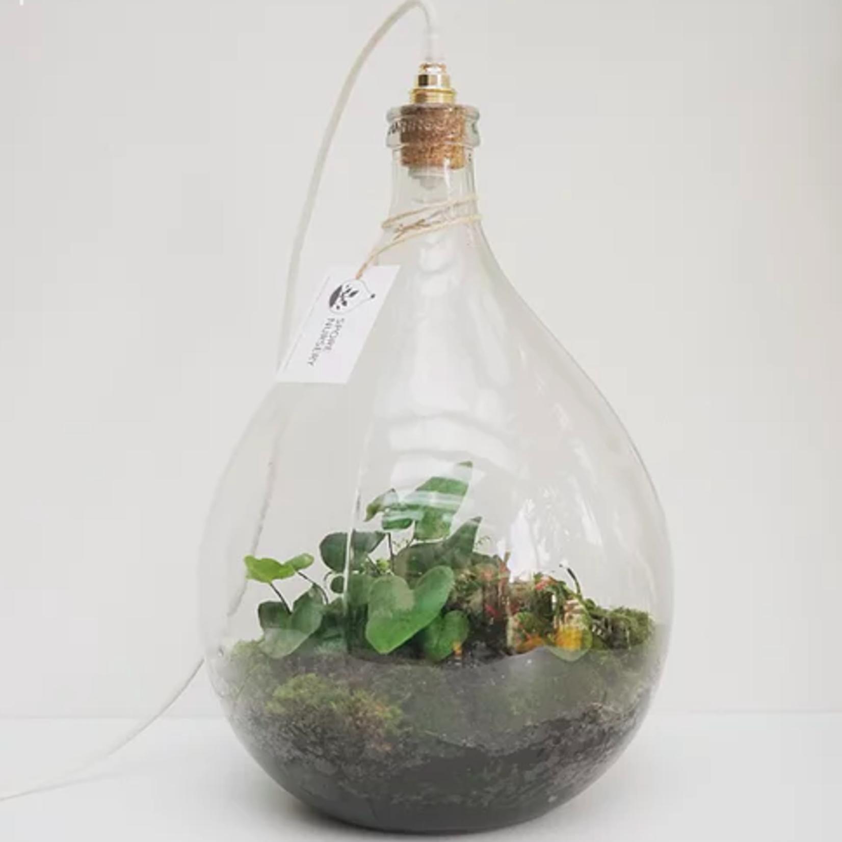 Spore Nursery Biosfeer 54 L met lamp