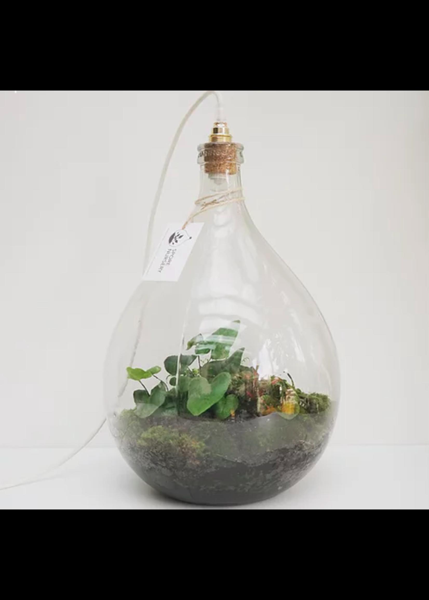 Spore Nursery Biosfeer 34 L met lamp