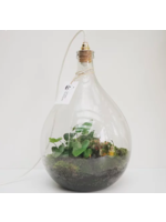 Spore Nursery Biosfeer 25 L met lamp