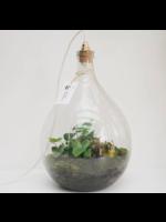 Spore Nursery Biosfeer 20 L met lamp