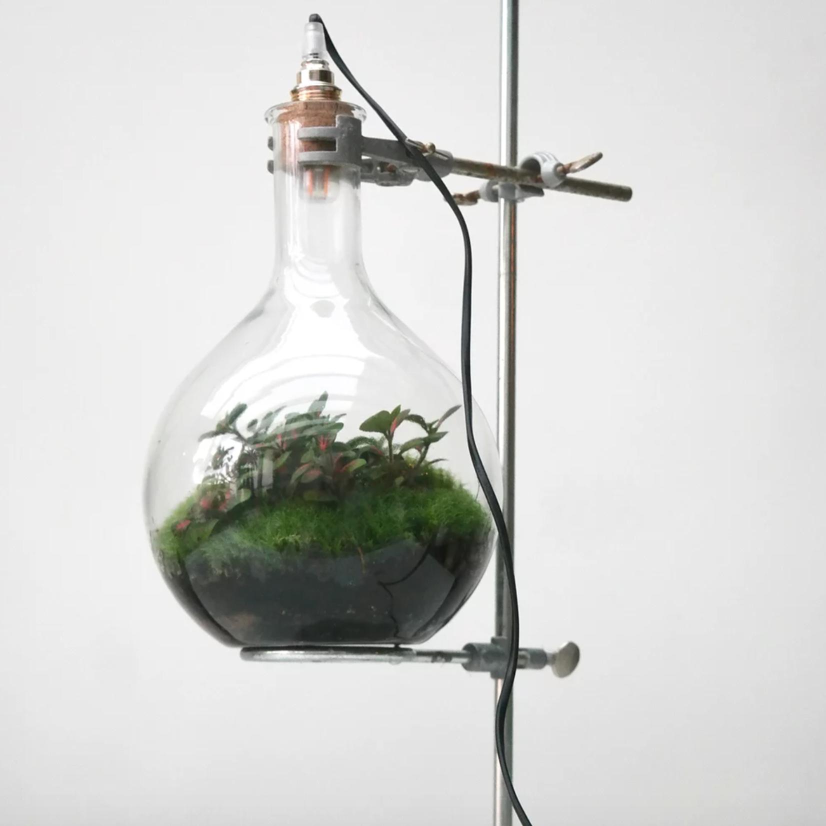 Biosfeer met led-lamp op staander