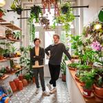 Spore Nursery Huisbezoek met plantenadvies
