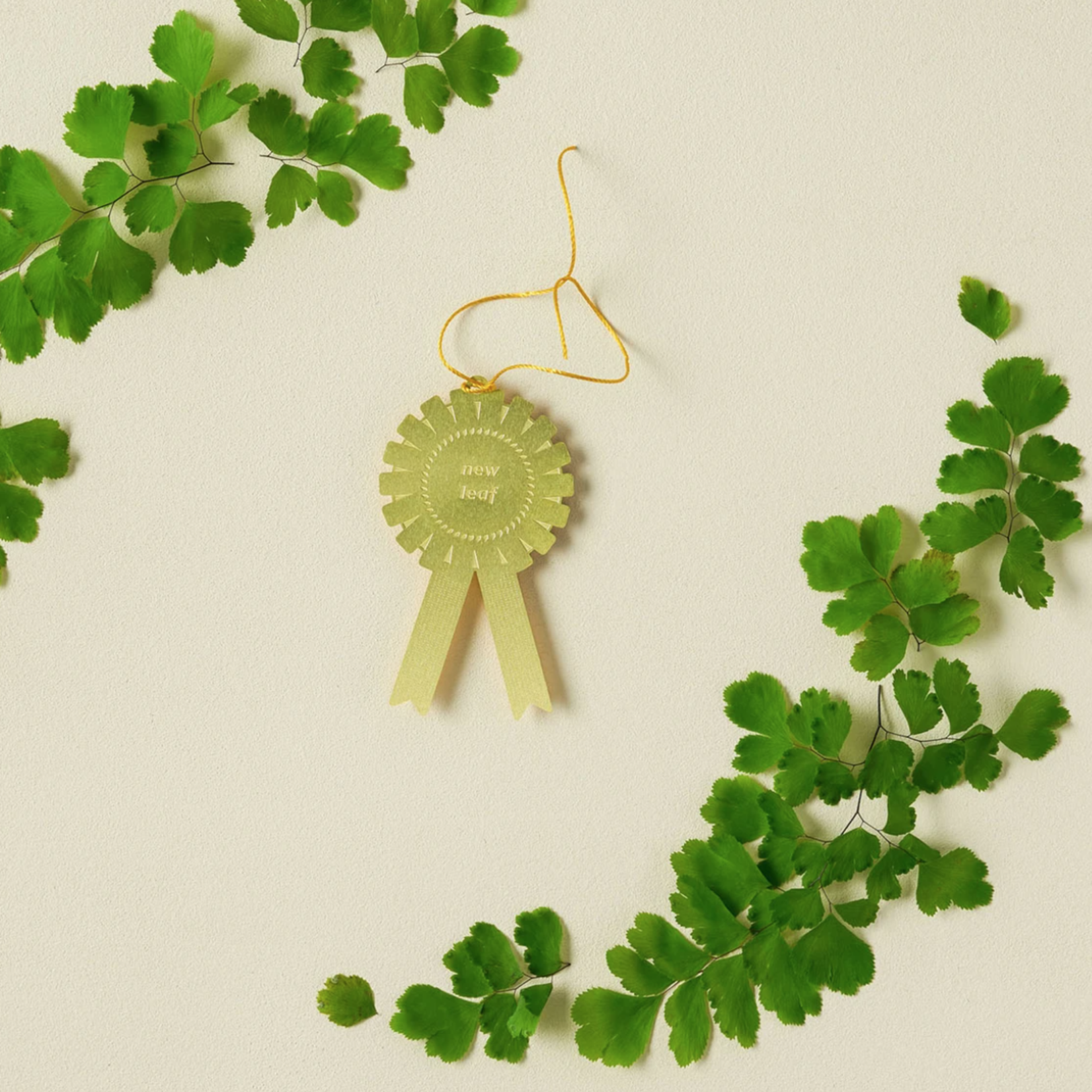 another studio Plant Award - New Leaf
