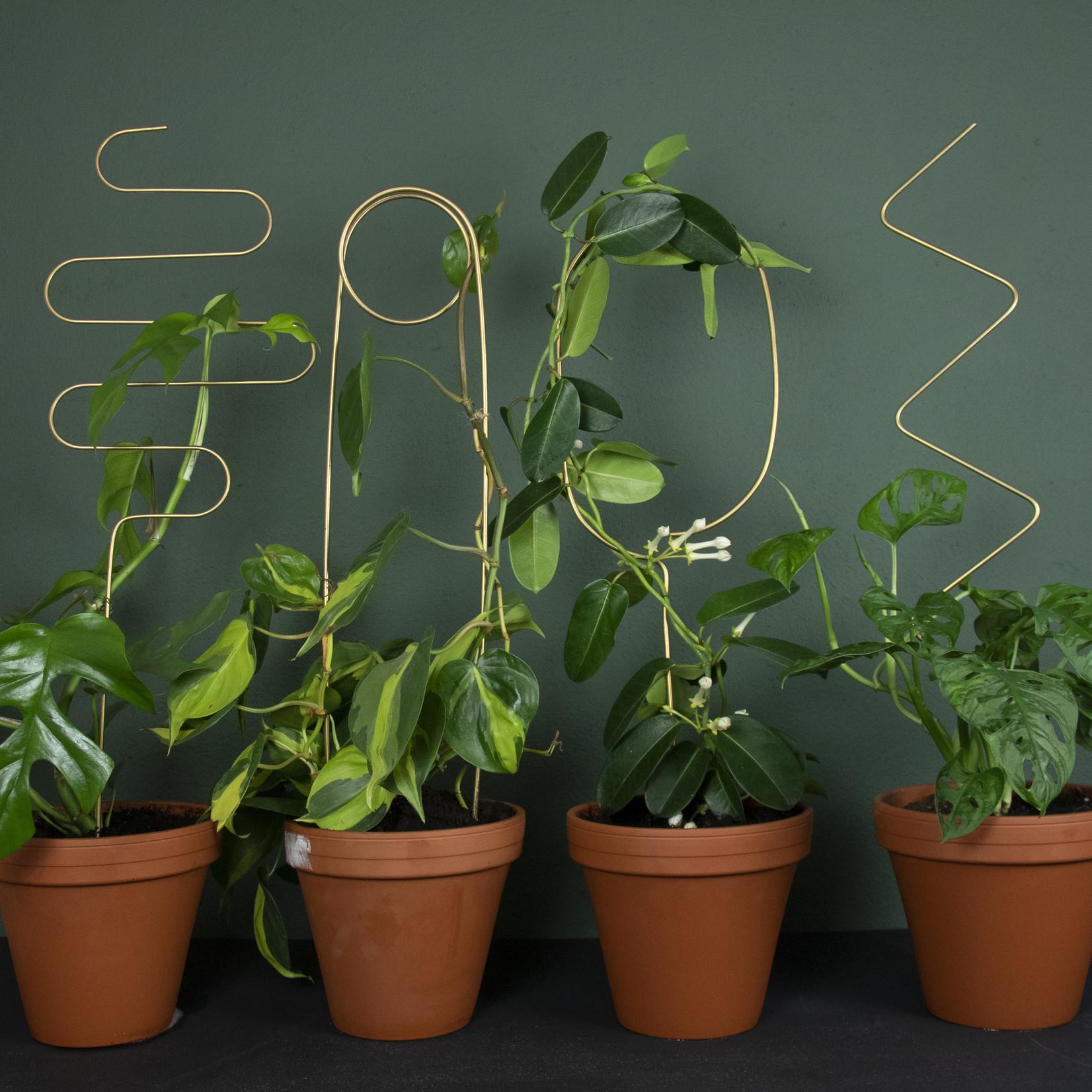 Botanopia Plant stake - Arch