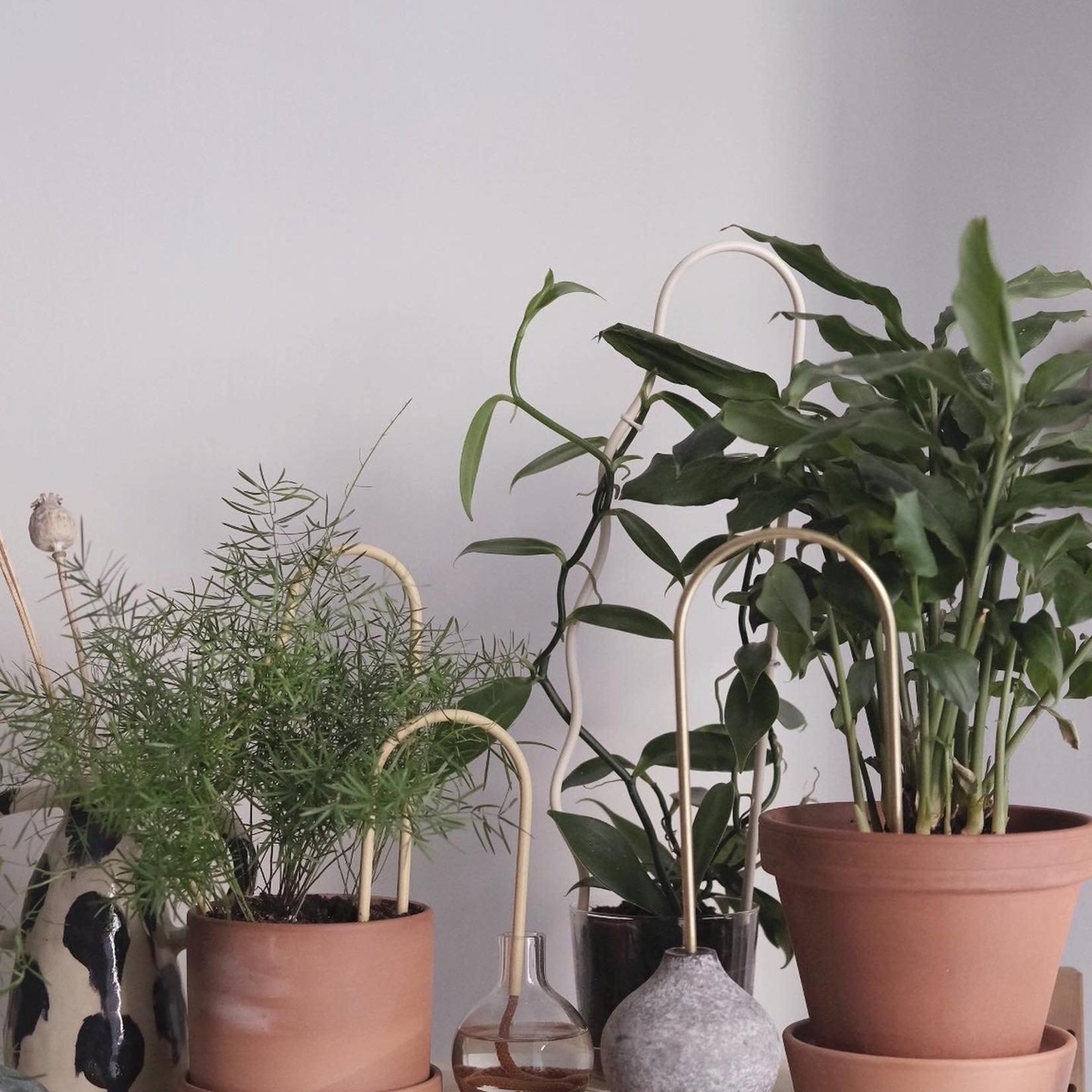 Plantstraws Plant straws (large)