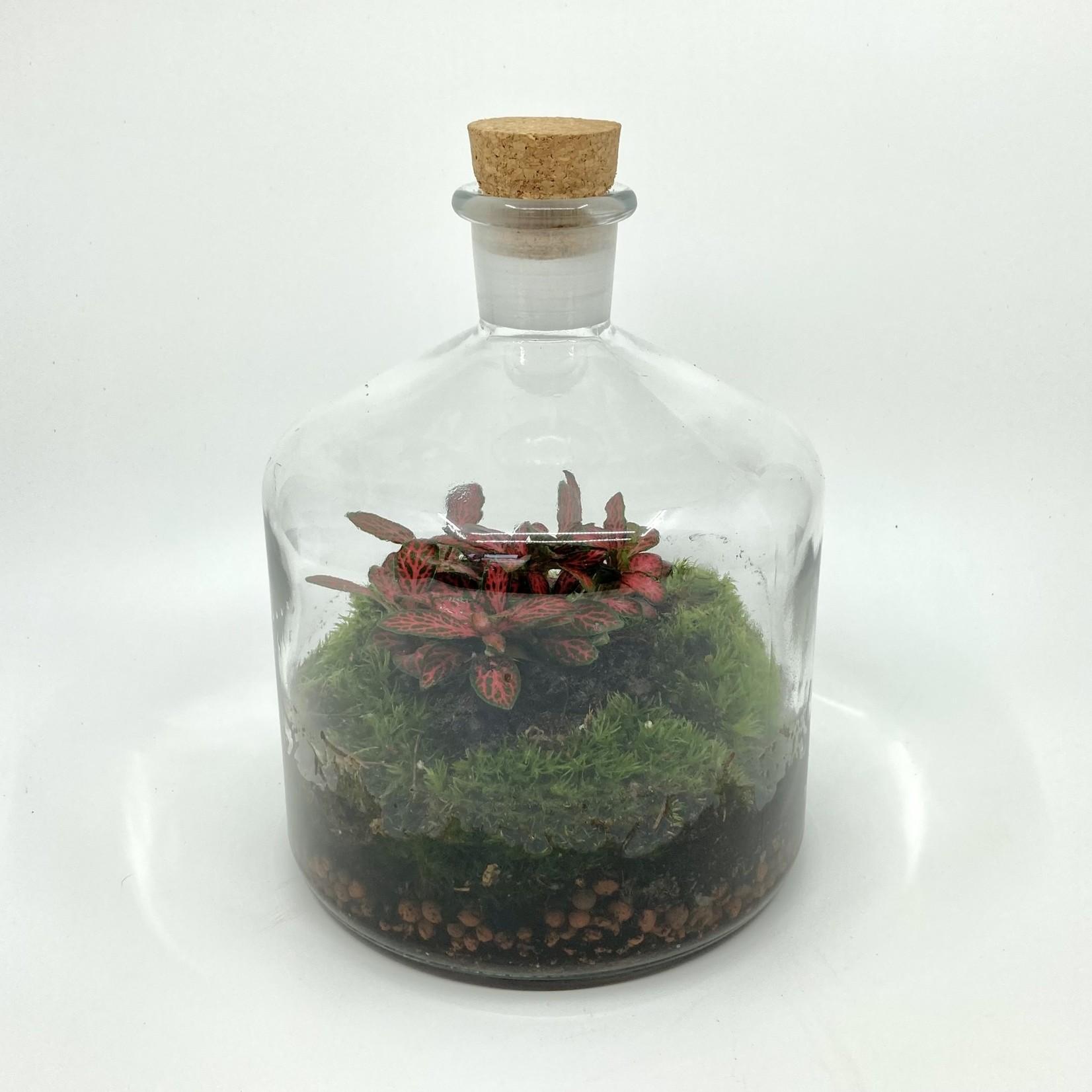 Spore Nursery Apothekersfles biosfeer, klein