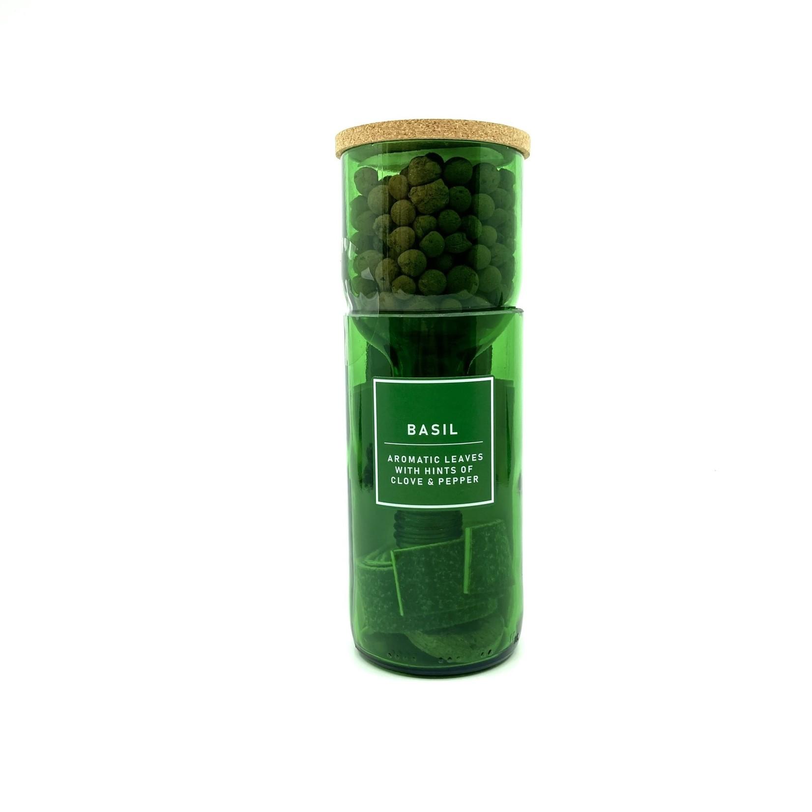Hydro Herb basilicum