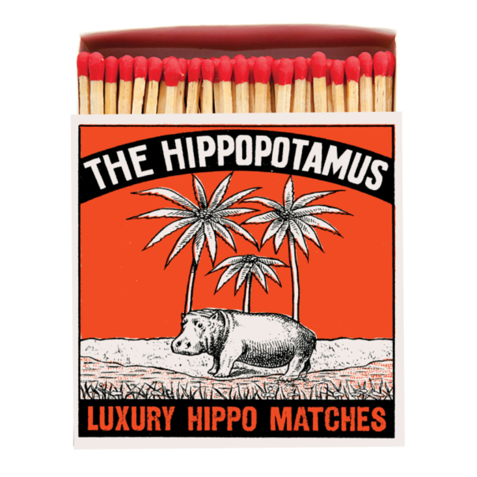 Saftey Matches Hippo
