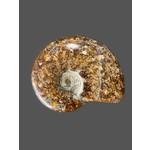 Ammonite med. 240grs.
