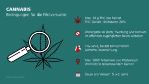 Pilotversuche mit Cannabis Schweiz
