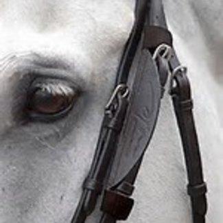 DYON DYON AB99K oogkleppen Blinkers