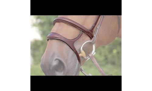 accessoires/pieces bridle