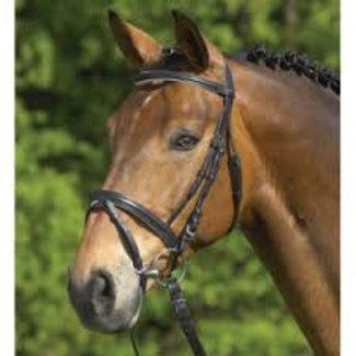 Privilege equitation hoofdstel pony zwart + teugels