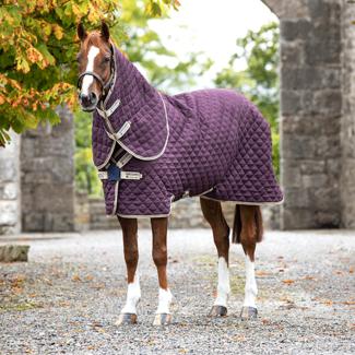HORSEWARE Horseware amigo stable plus medium 200 gram