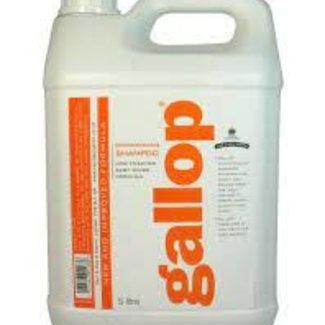 HFI Carr & day gallop shampoo 5L