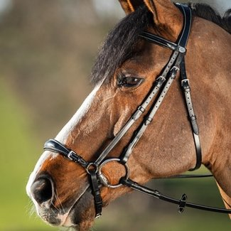 HFI HFI german bridle