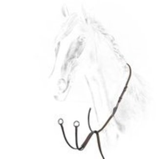 EQUILINE EQUILINE running martingale
