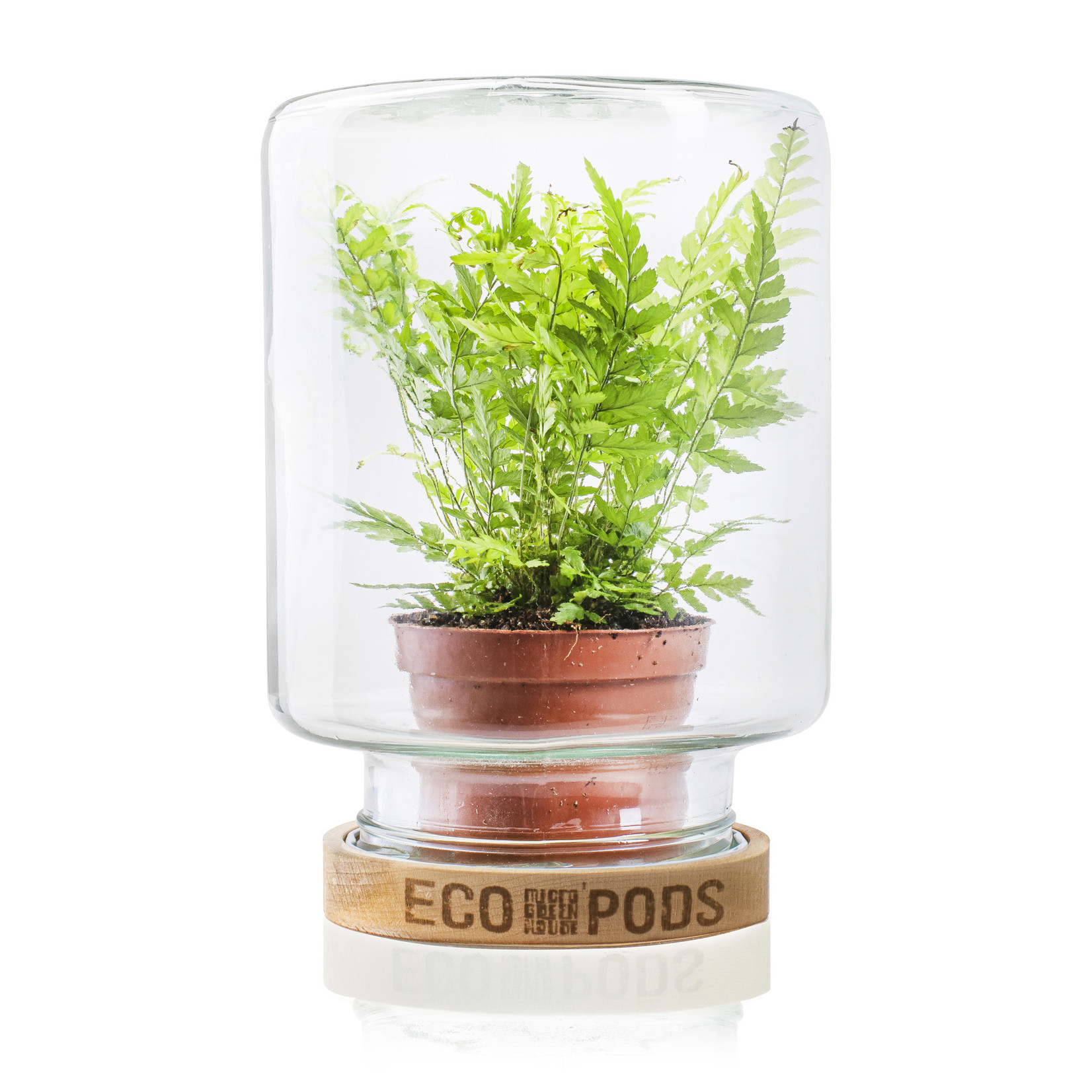 Jodeco Glass Micro Greenhouse 'Mitch' H20 D15,5 cm Transparant