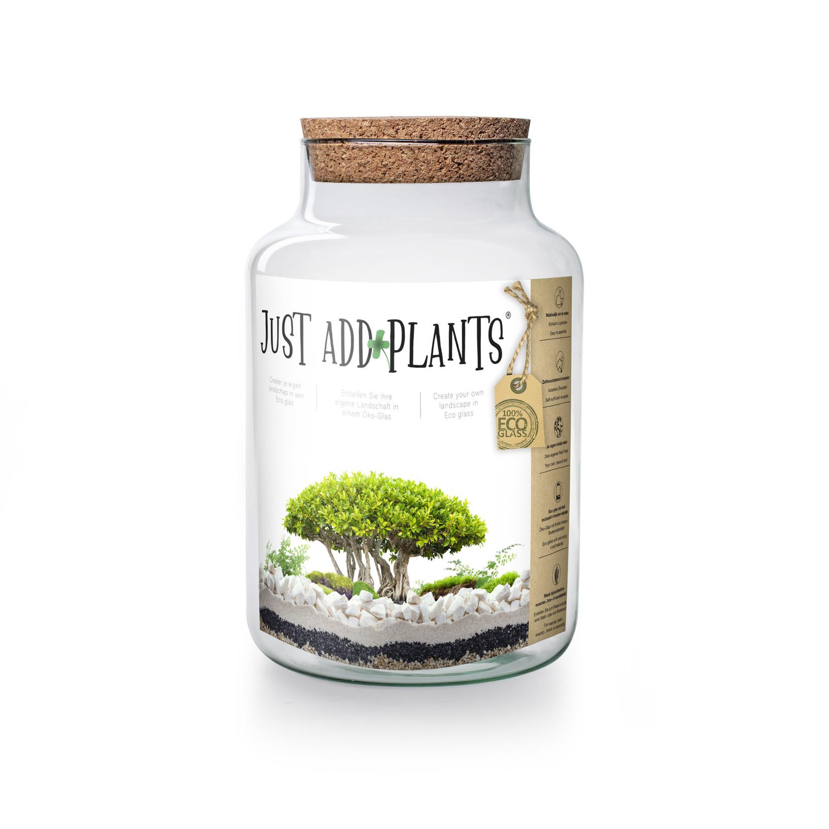 Jodeco Glass Just add Plants Terrarium H30 D19 cm Transparant