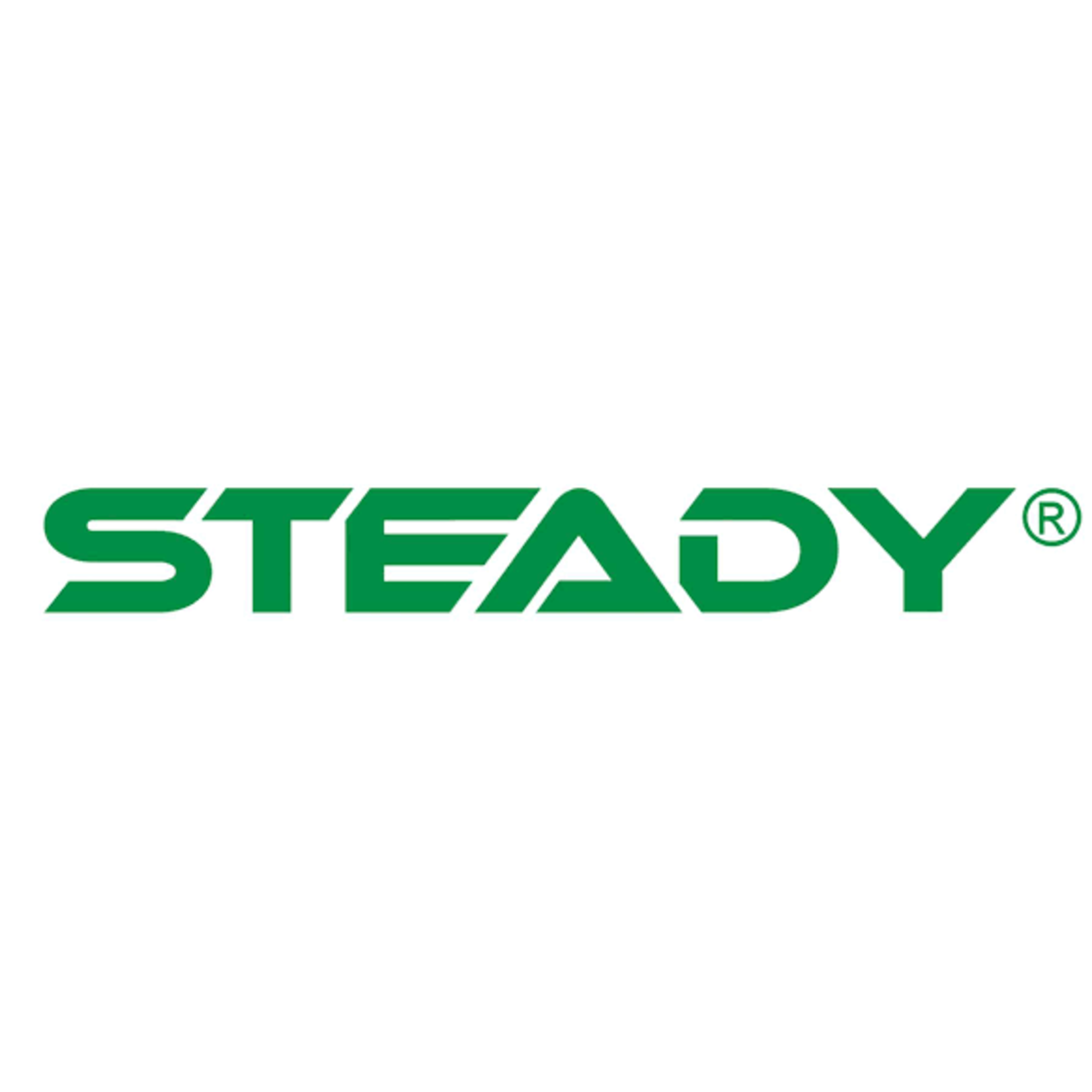 Steady Steady BBMS2 - outboard enginelock - SCM approved