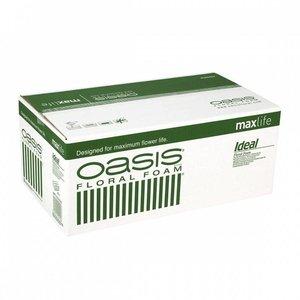 OASIS® FLORAL FOAM IDEAL Maxlife Steekschuim Blok | 23x11x8cm