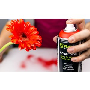 FLORALIFE® Aqua Colors Acryl Decoratie Spuit Verf op Waterbasis | Wit | 400 ml Spuitbus