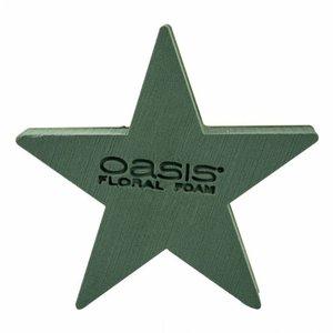 OASIS® BIOLINE® OASIS® BIOLINE® Steekschuim Ster 25 x 25 x 4,5 cm