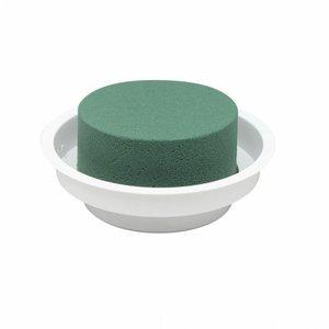OASIS® FLORAL FOAM OASIS® Junior Complet | Weiß | Ø12x5cm | 12 stück