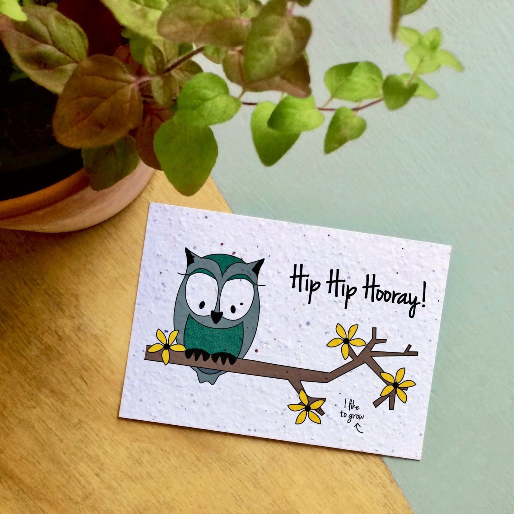 "BLOOM Your Message Bloeikaart Owl ""Hip Hip Hooray"""