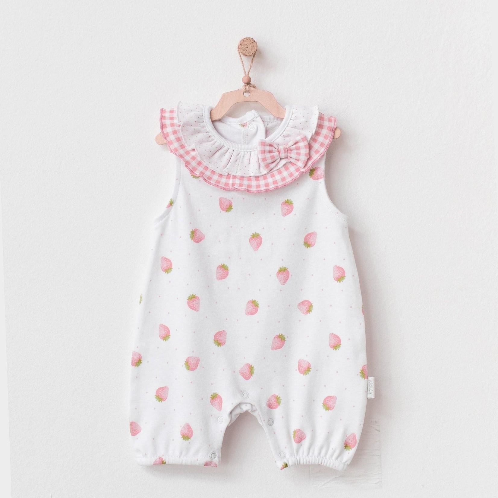 Babymeisjes Zomers Pakje