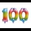 Feest-vieren Folieballon 100 jaar Regenboog 41cm