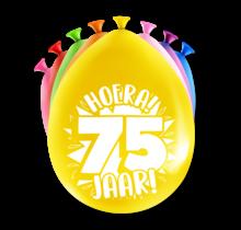 Feest Ballonnen - 75 jaar