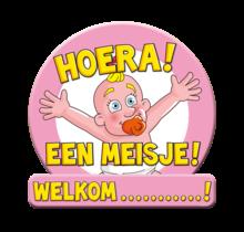 Deurbord - Huldeschild - Geboorte meisje roze