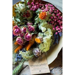 Droogbloemen boeket multicolor large