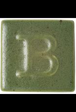 Botz Moss Green 200ml