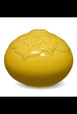 Amaco Celadon Marigold