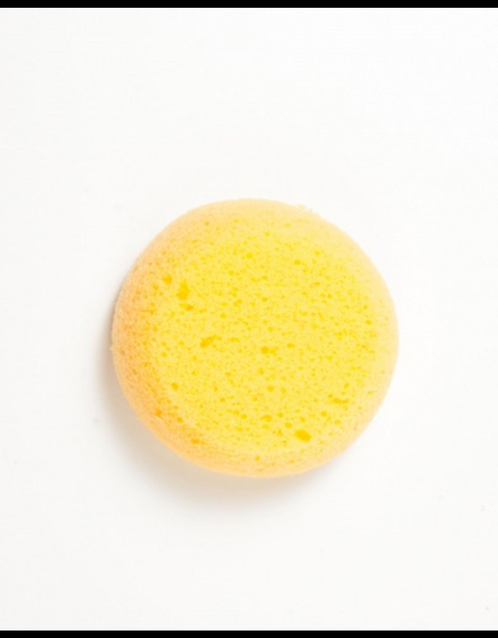 Seven Skill Small Round Sponge