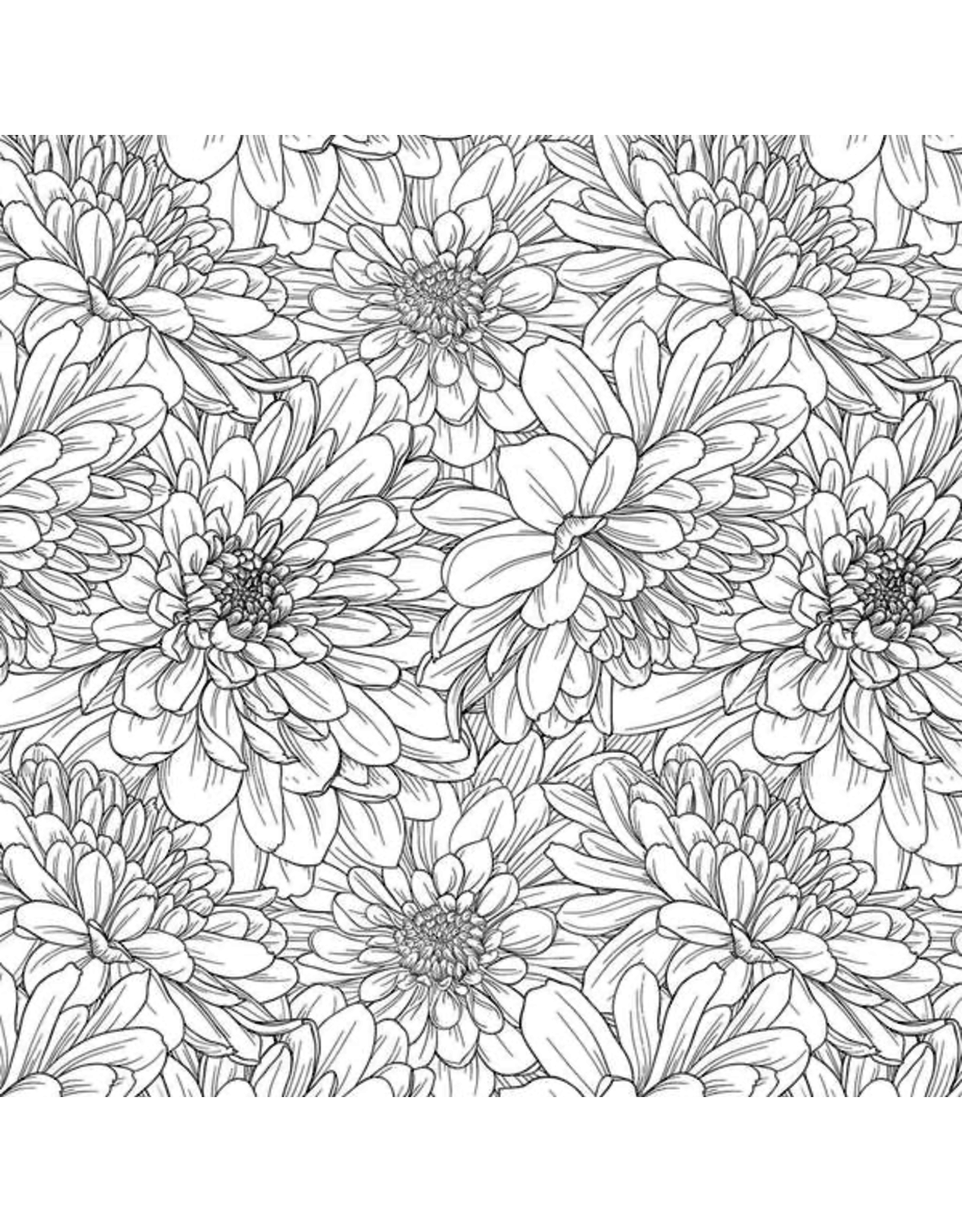 Sanbao Flower Daisy