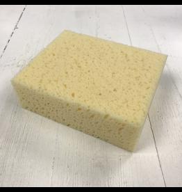 Rectangular Sponge