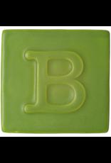 Botz Green Matt 200ml