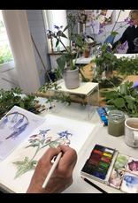 Drawing & Painting (5 weeks)