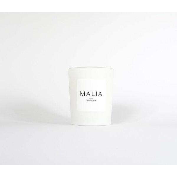 MALIA MALIA - Elevation - Full size